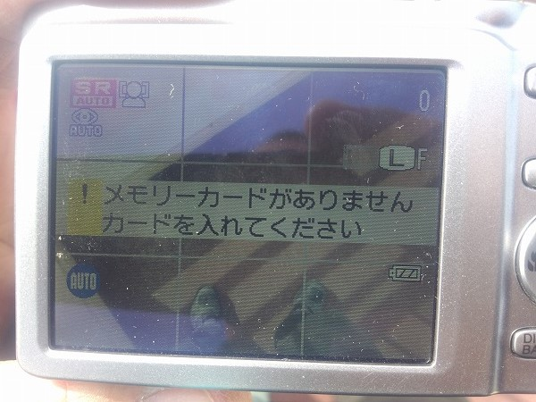 DCF00252.jpg